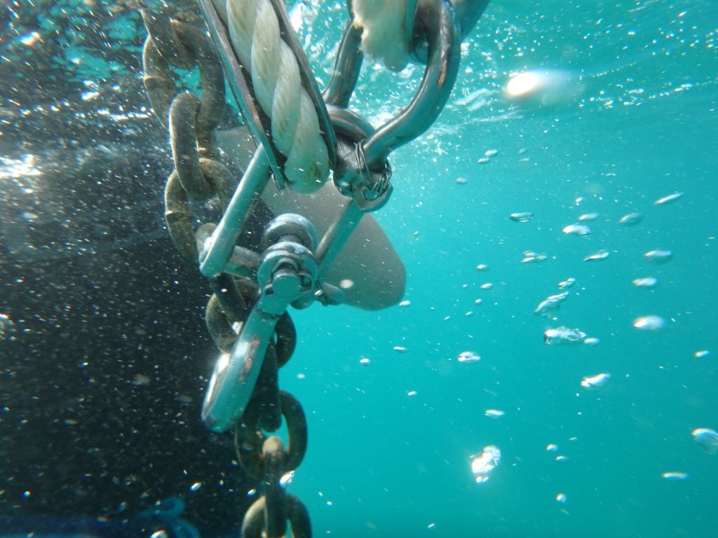 Anchor snubber - always good to dive on the anchor