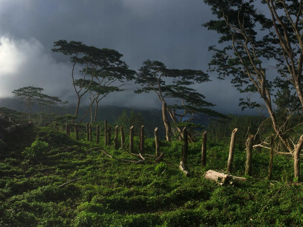 Before the Rain - Part of an amazing panorama taken on the pastures of upper Nuku Hiva