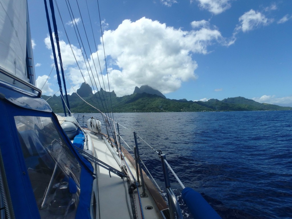 Anchorage Haapiti - West Moorea
