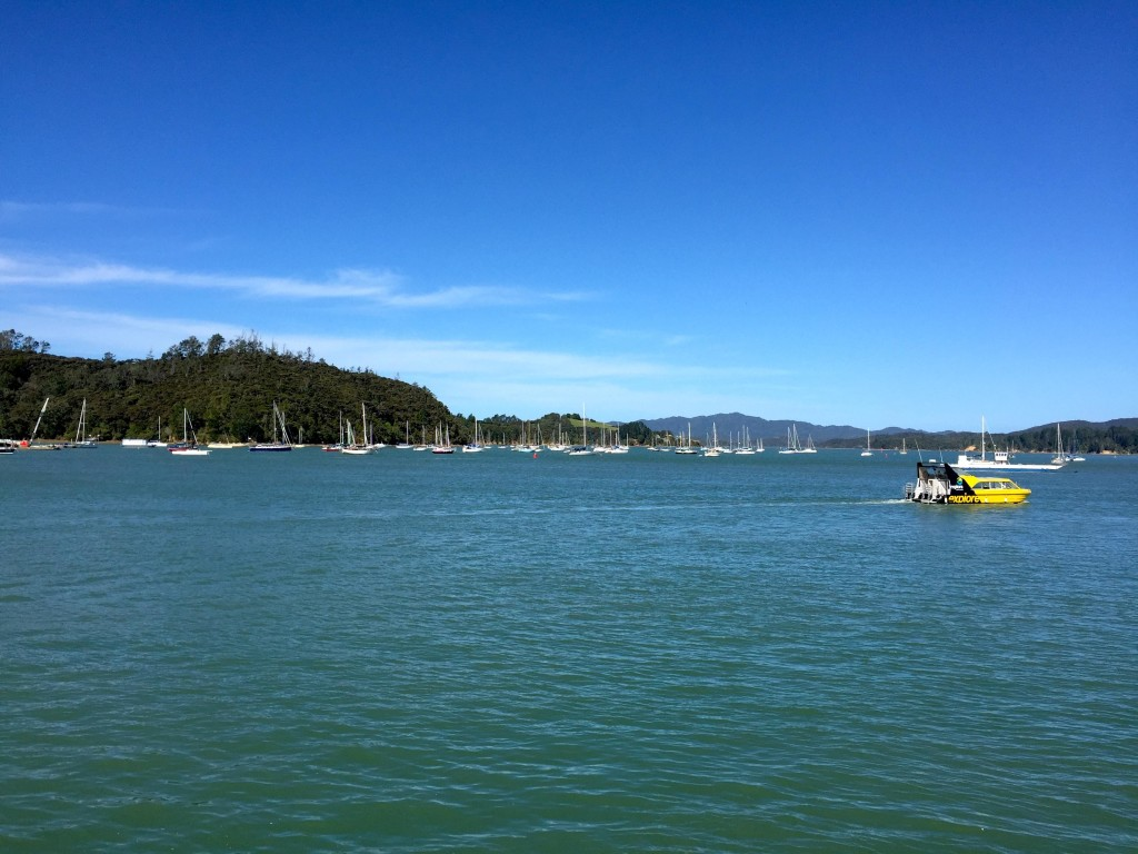 Bay of Islands - Small towns with many, many boats - feels like home