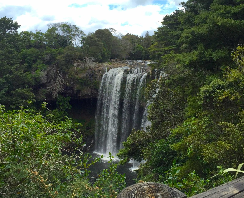 Rainbow Falls - Located in nearby Kerikeri