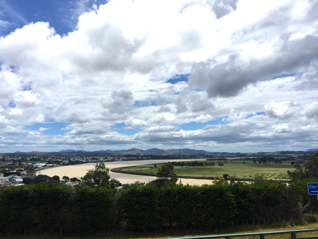 Dargaville Overlook - Surveying the landscape from this West coast town