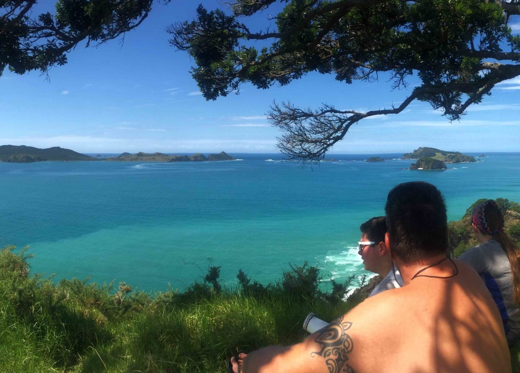 Matauri Bay Overlook - A beautiful view!