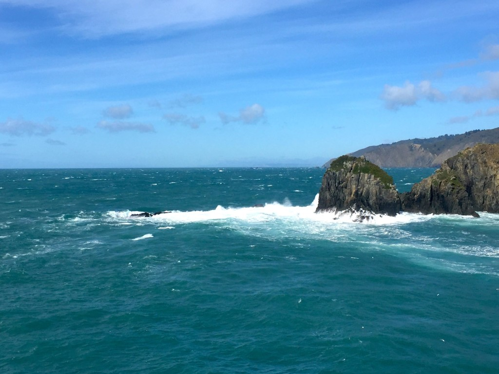 Leaving the South Island on the Interislander ferry, and another 30 knot day!