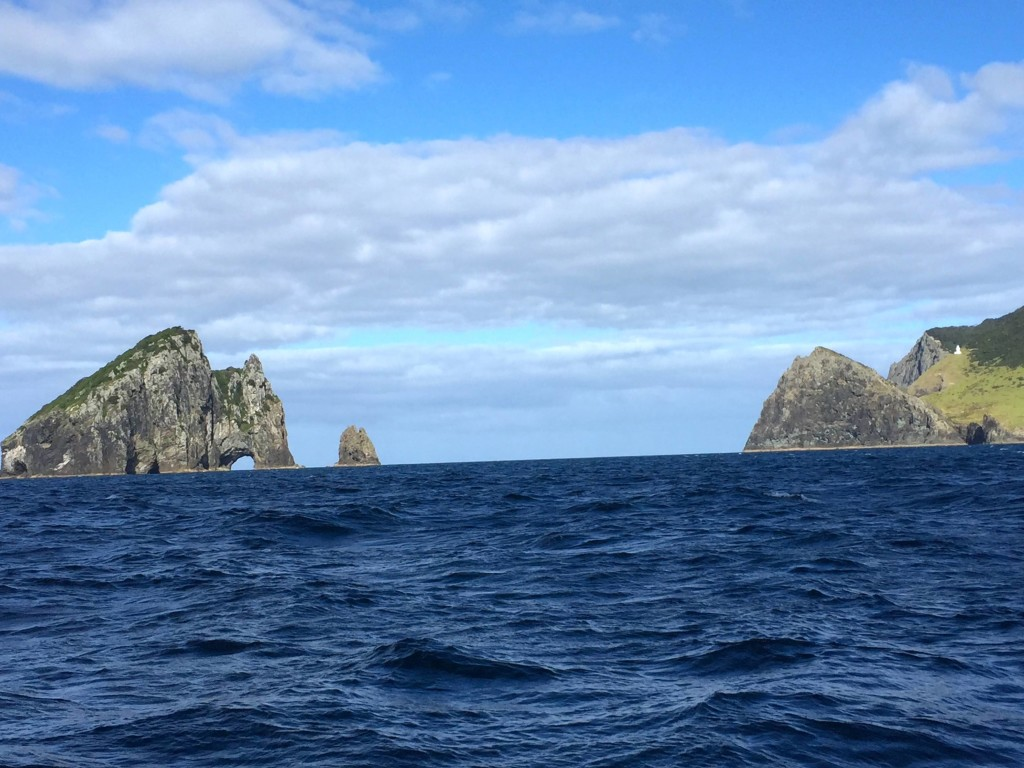 Hole in the Rock - Just off Cape Brett, Bay of Islands, New Zealand