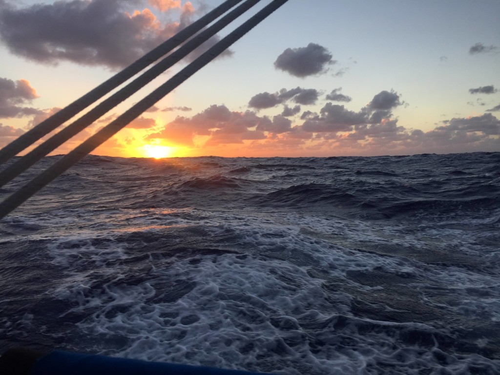 Dawn - Another beautiful dawn while underway in large seas
